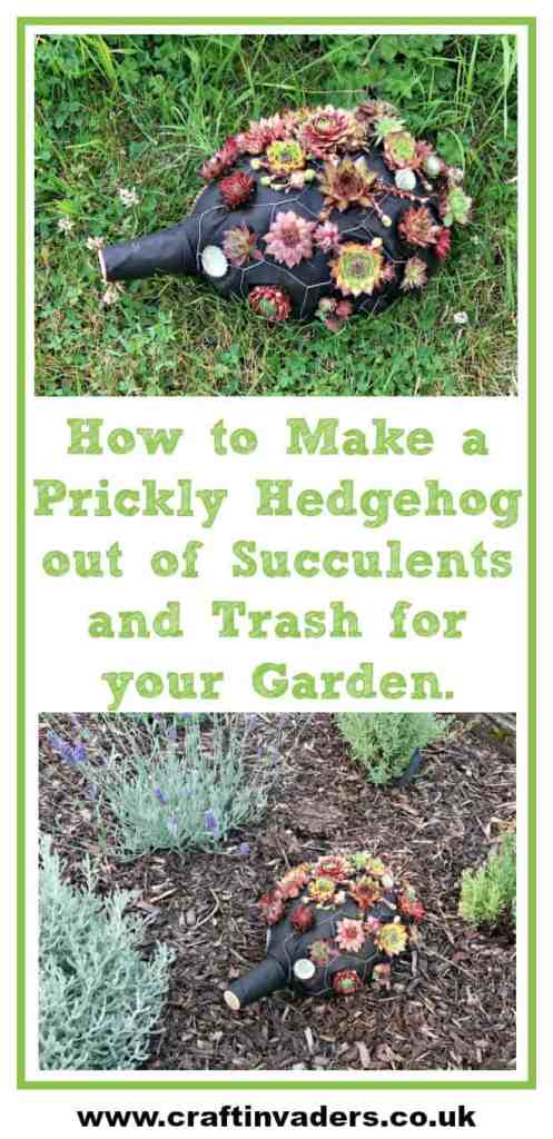 How to make an adorable hedgehog out of succulents and trash for your garden.