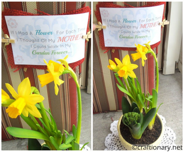 simple daffodils in planter with printable mom quote gift idea