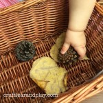 How To Engage Kids With Simple Fall Nature Activities