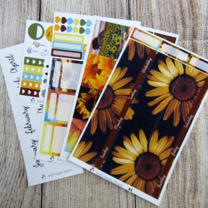 Choose to Shine Monthly Sticker Set, Customizable, ERIN CONDREN