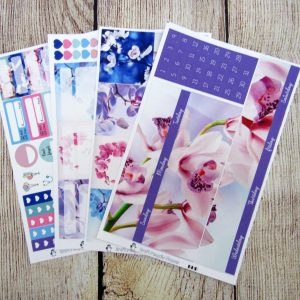 Orchids Monthly Sticker Set, Customizable, BIG HAPPY PLANNER