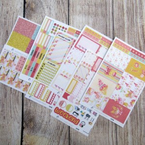 Bright Side Weekly, CLASSIC HAPPY PLANNER