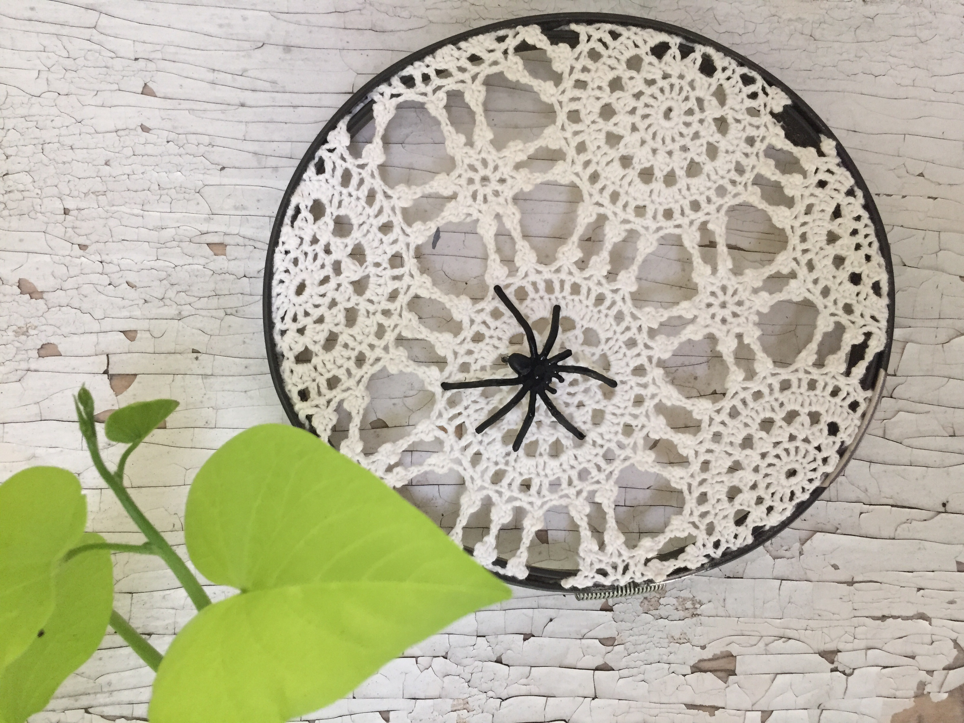 3 Pretty Designs of Craft Paper Doilies Spider Web Doily Craft Island Life For Me