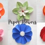 Craft Flower Paper 6 Easy Paper Flowers Craft Ideas Diy Flowers Youtube