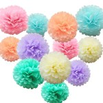Ways On Making Tissue Paper Rainbow Craft Ishyan 12 Pcs Assorted Rainbow Colors Tissue Paper Pom Poms Flower