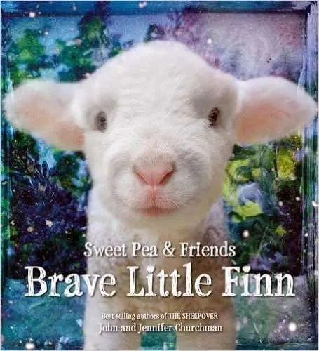 Brave Little Finn by John & Jennifer Churchman