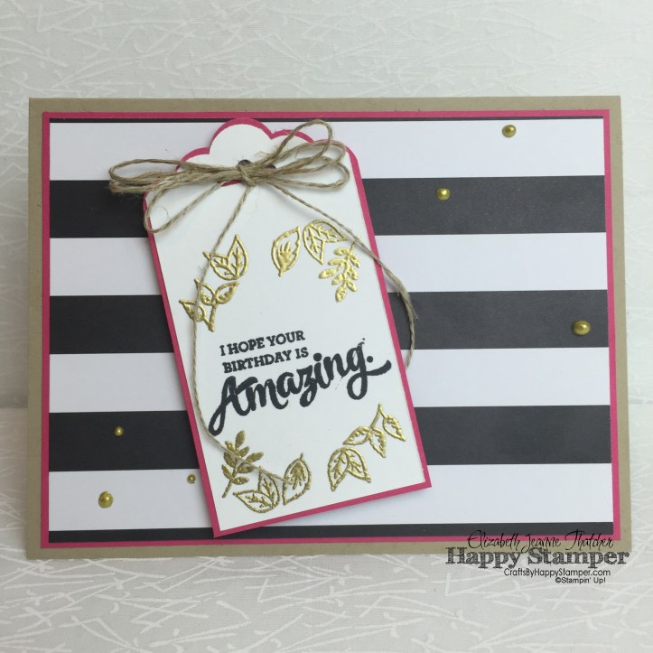 stampin up, mixed borders, pop of pink, sip#58