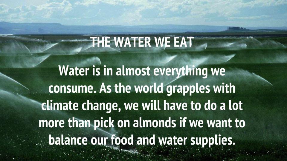 The Water We Eat | Craftsmanship Magazine Spring 2015