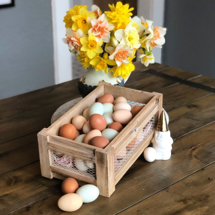 Urban homestead eggs for sale with daffodils.  Multiple colors of blue, green, brown, tan and white eggs.