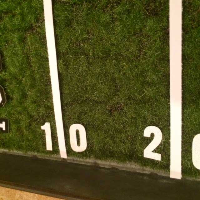 Faux Moss Super Bowl Field Serving Tray