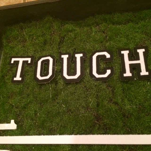 faux-moss-touchdown