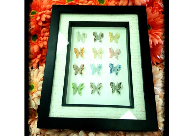 Butterfly Shadowbox @ Meridian Location | Meridian | Idaho | United States