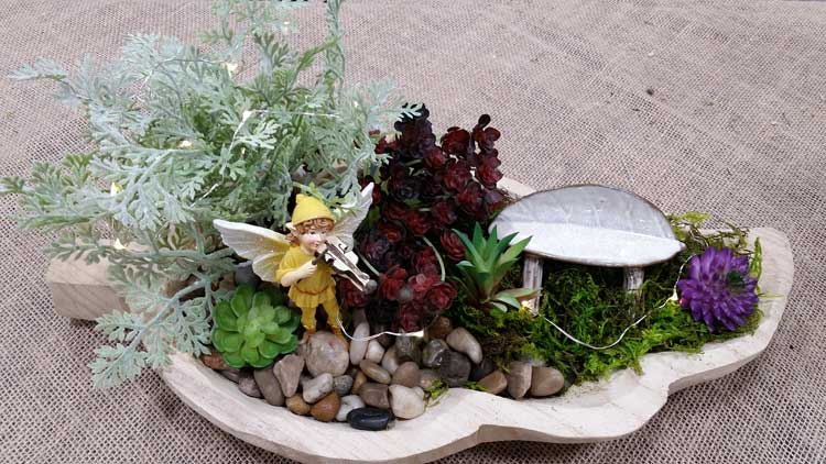 Leaf Tray Fairy Garden @ Hazel Dell Location | Vancouver | Washington | United States
