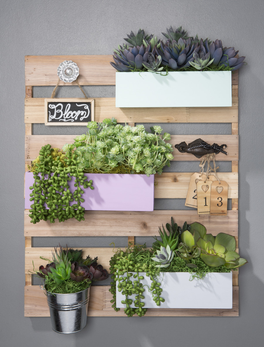 wood pallet board with succulents at Craft Warehouse