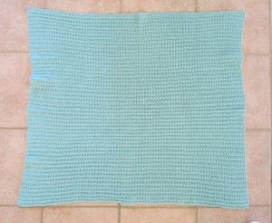 School of Fish Baby Blanket