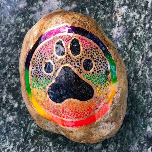 Natural Stone with animal paw design in black and rainbow colours frame on dark background