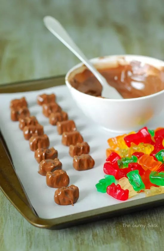 Chocolate_Dipped_Gummy_Bear_Ingredients