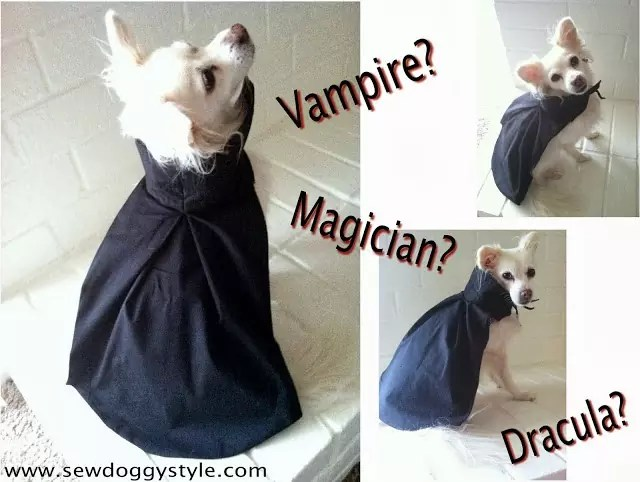 Dog vampire costume by SewDoggyStyle.com