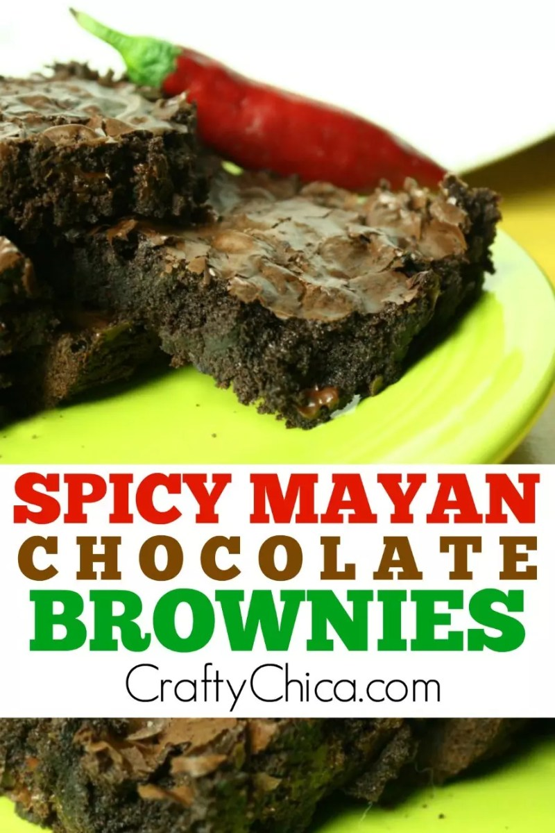 Spicy Mayan Brownies by CraftyChica.com.