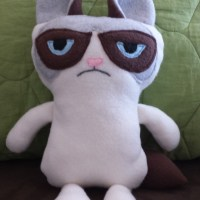 My homage to Grumpy Cat - DIY Plush