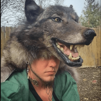 Black Wolf Headdress