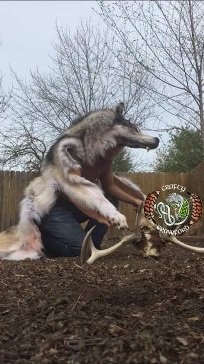 Real Wolf Headdress