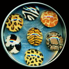 Animal Prints Magnet Set