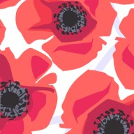 Jane Dixon, Poppy - Modern Graphic Poppies in red