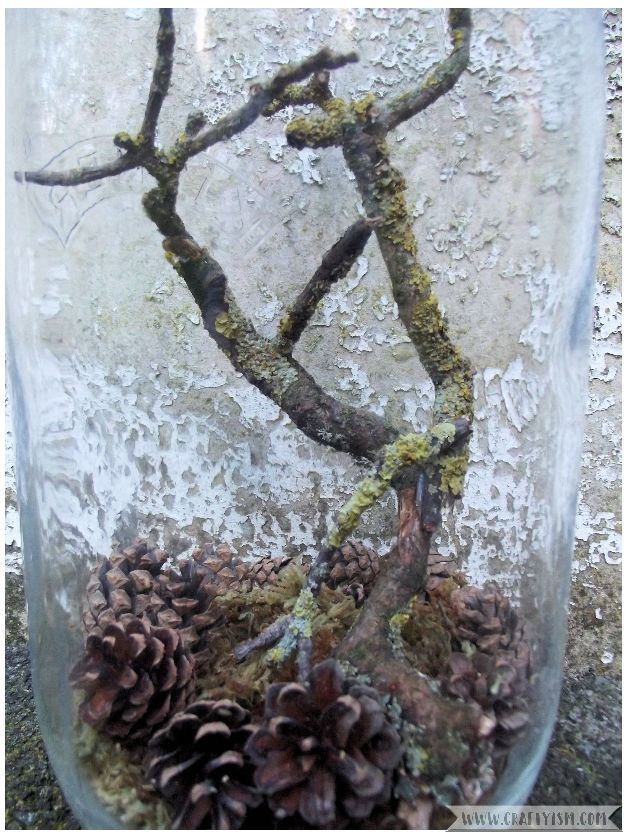 How to - Mason Jar Tree Terarrium Finished