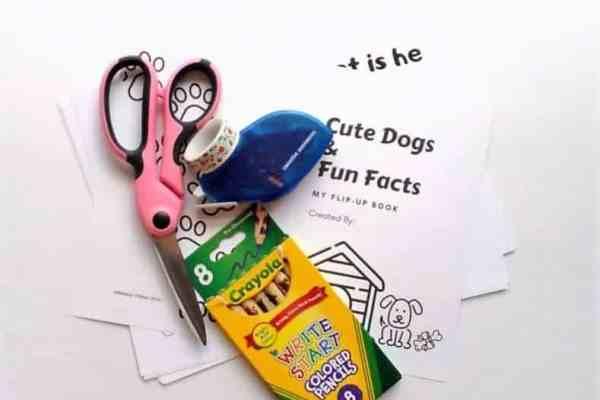 Dog Themed lift-the-flap book Idea Supplies