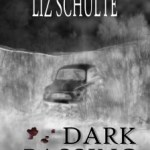 Dark Passing by Liz Schulte #bookreview #booktour