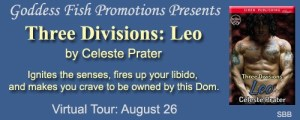 THREE DIVISIONS: LEO by Celeste Prater