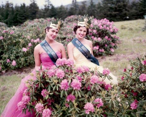 Beauty Queens at Roan Mountain NC