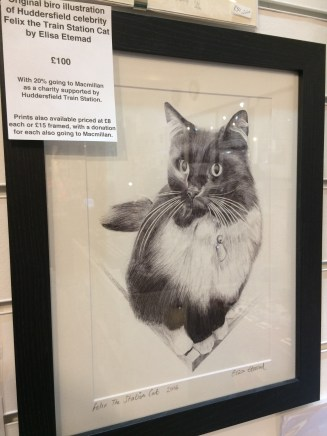 Elisa Etemad Illustrations - Felix the Huddersfield Station Cat
