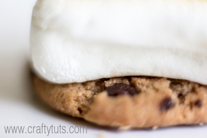 Indoor Oven-made Smores. How to make indoor smores, for when you can't go outside but still want to enjoy this summer treat. (enjoy them during winter too)