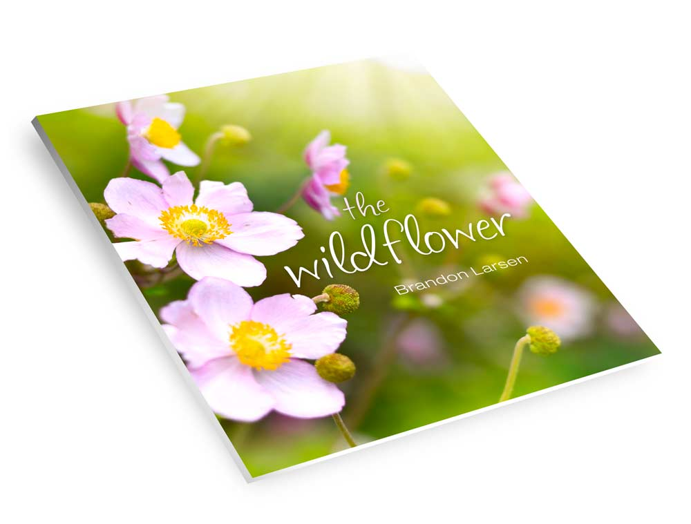 the wildflower book cover