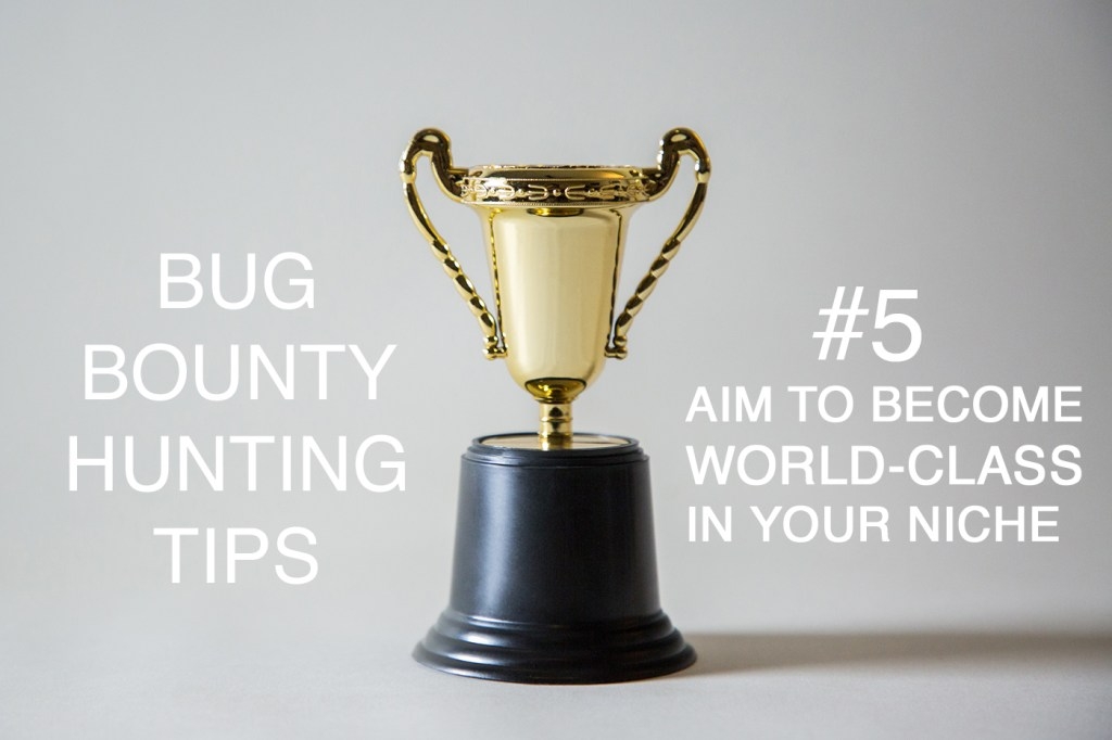 bug bounty hunting tips aim to become world-class in your niche