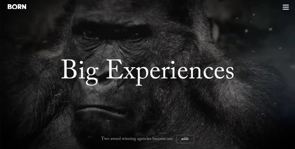 big experiences by born group