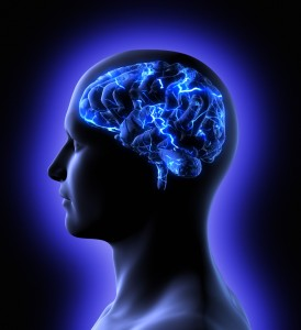 brain-activity-m2-e1377138621125