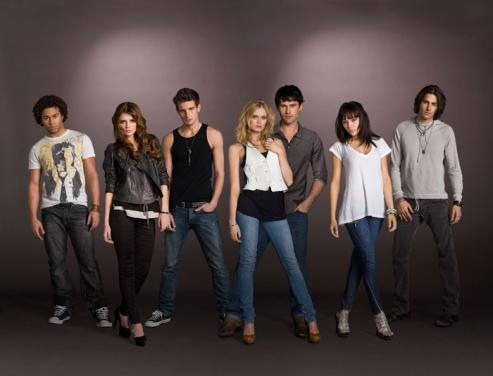Corbin Bleu, Mischa Barton, Sarah Paxton, Ben Hollingsworth, and the rest of the cast of The Beautiful Life