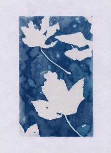 Cyanotype Print| Craig Richards.2019