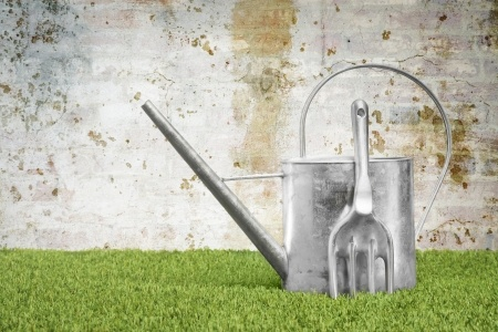 The Watering Can – part 1