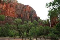 Deep shades of red are the prevailing color in the towering rock formations in Zion Canyon in Utah. (Craig Davis/Craigslegztravels.com)