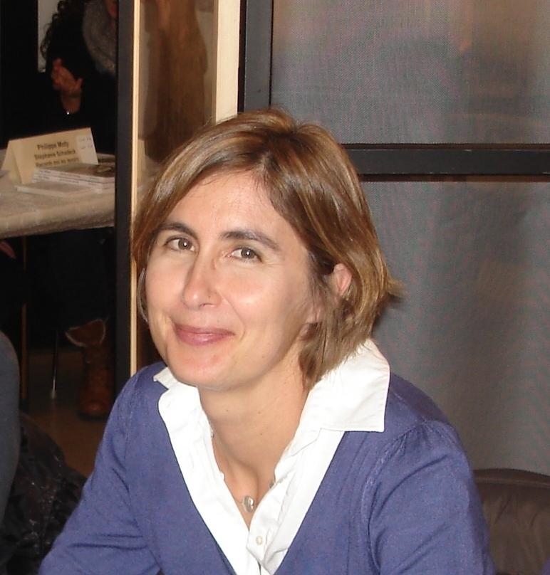 Vuillemin Sophie Les Romanciers Nantais