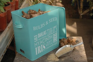 GYO-BULBTIN-Bulb-Tin-LARGE