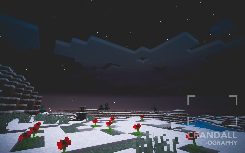 20151025_Minecraft_011
