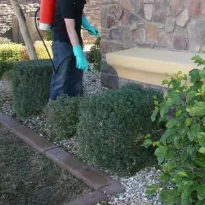 property-management-and-HOA-pest-control-services