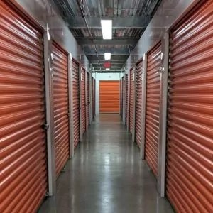 Storage-Facility-Pest-Control-and-Extermination-Services