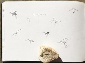 Cranes landing slowly - 'sitting on the wind'