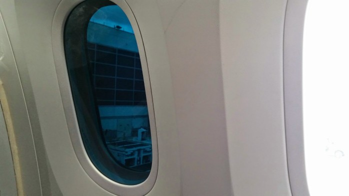Dark Window ANA 787